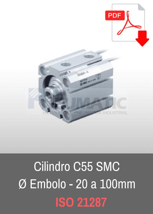 cilindro c55 smc iso